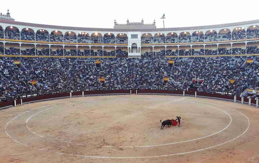 tlumaczenia stron www z i na hiszpanski, tlumaczenia stron hiszpanski, tlumaczenia stron www, tlumaczenia hiszpanski